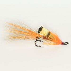 Ally's Shrimp Oranssi