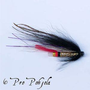 PU Golden Goldhawk