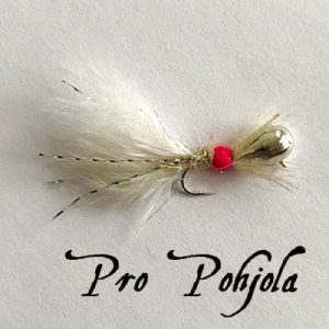 Pro Pohjolan morripilkki (129)