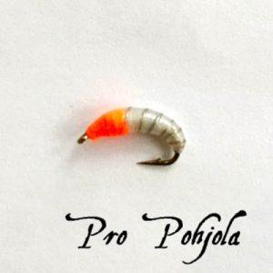 Pro Pohjolan nymfipilkki (WTR016)
