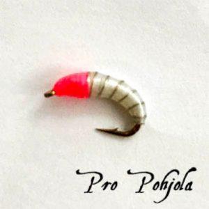 Pro Pohjolan nymfipilkki (WTR017)