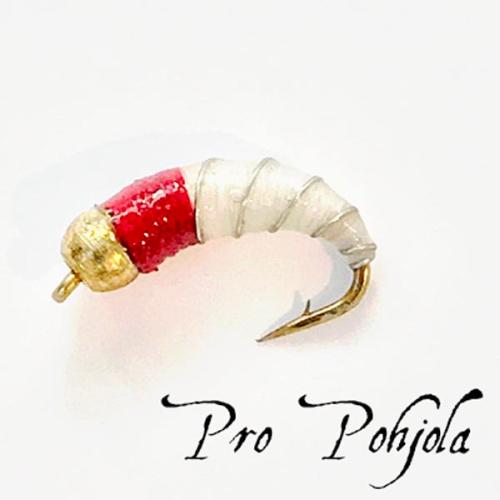Pro Pohjolan nymfipilkki (WTR019)