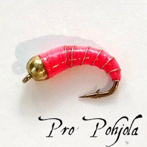 Pro Pohjolan nymfipilkki (WTR023)
