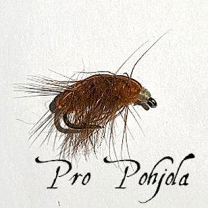 Ruskea katka (WTR106)