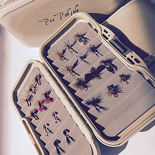 Pro Pohjolan harjusperho-kokoelma (20 perhoa)